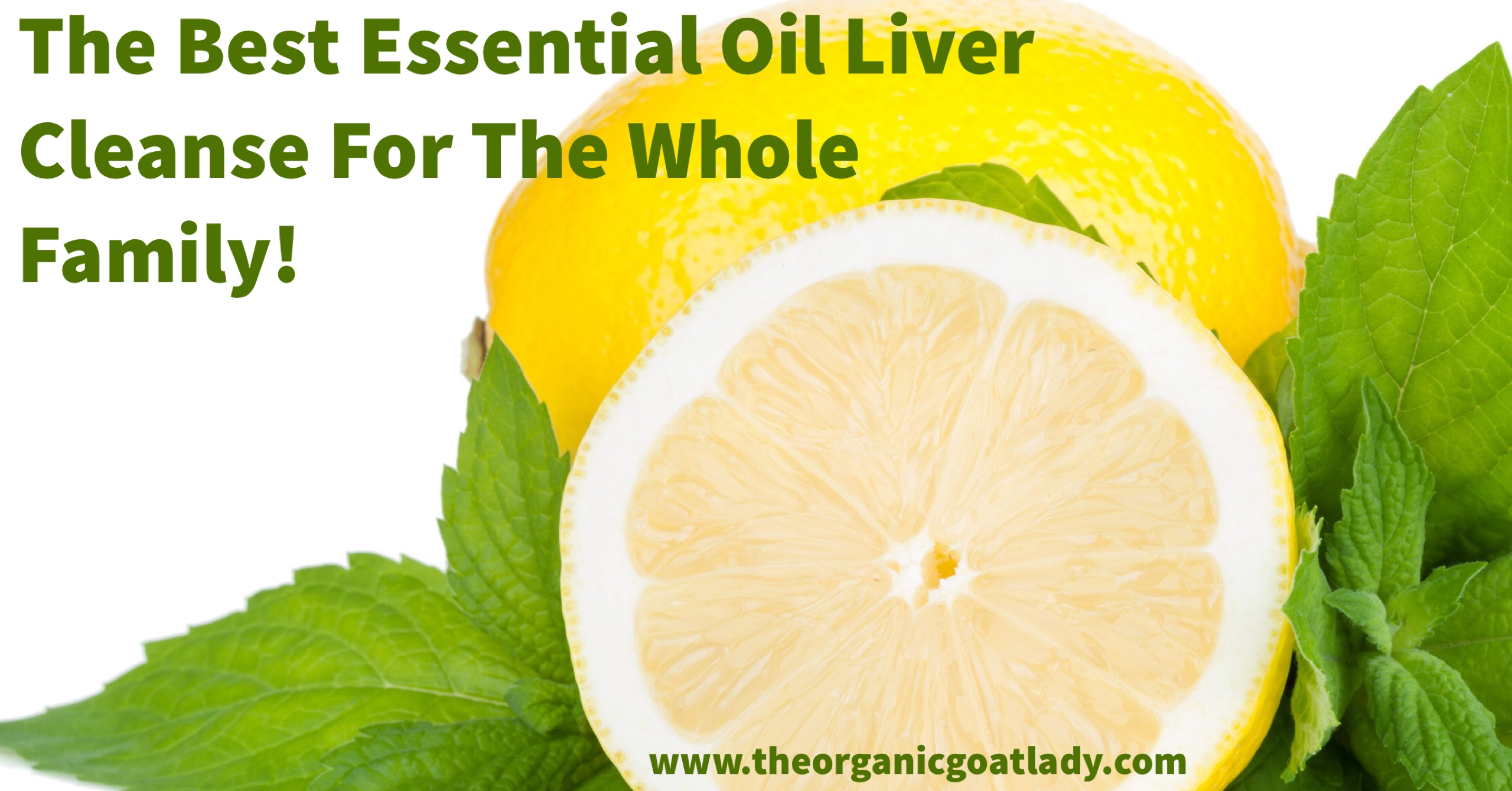 The Best Essential Oil Liver Cleanse For The Whole Family!