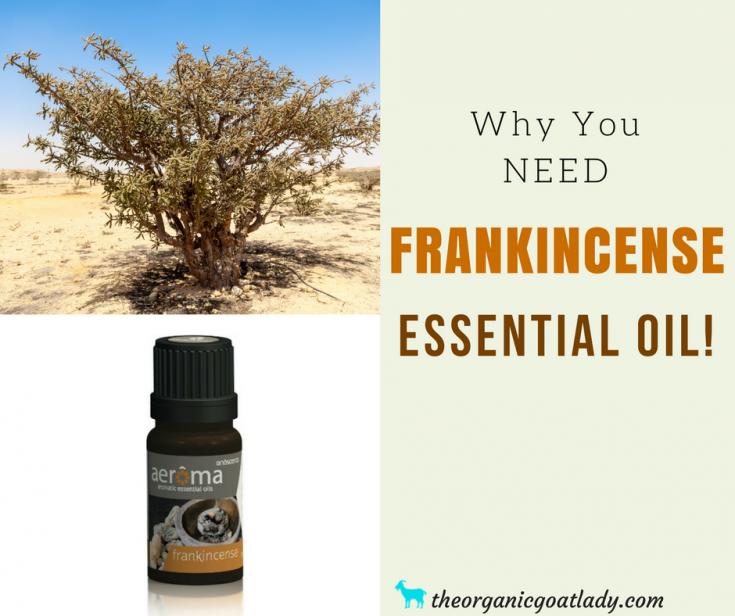 Why You Should Use Frankincense Essential Oil!