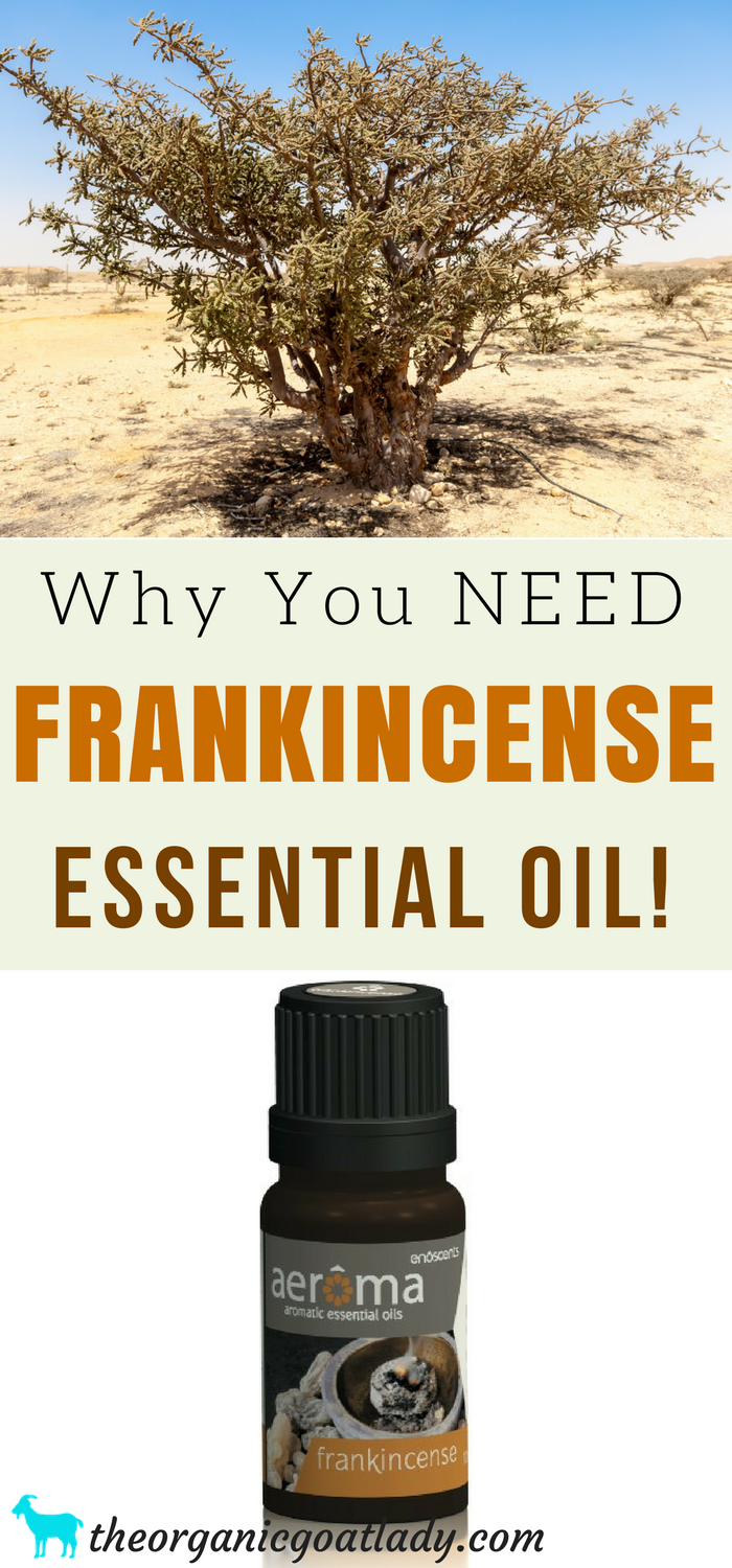 Why You NEED Frankincense Essential Oil!