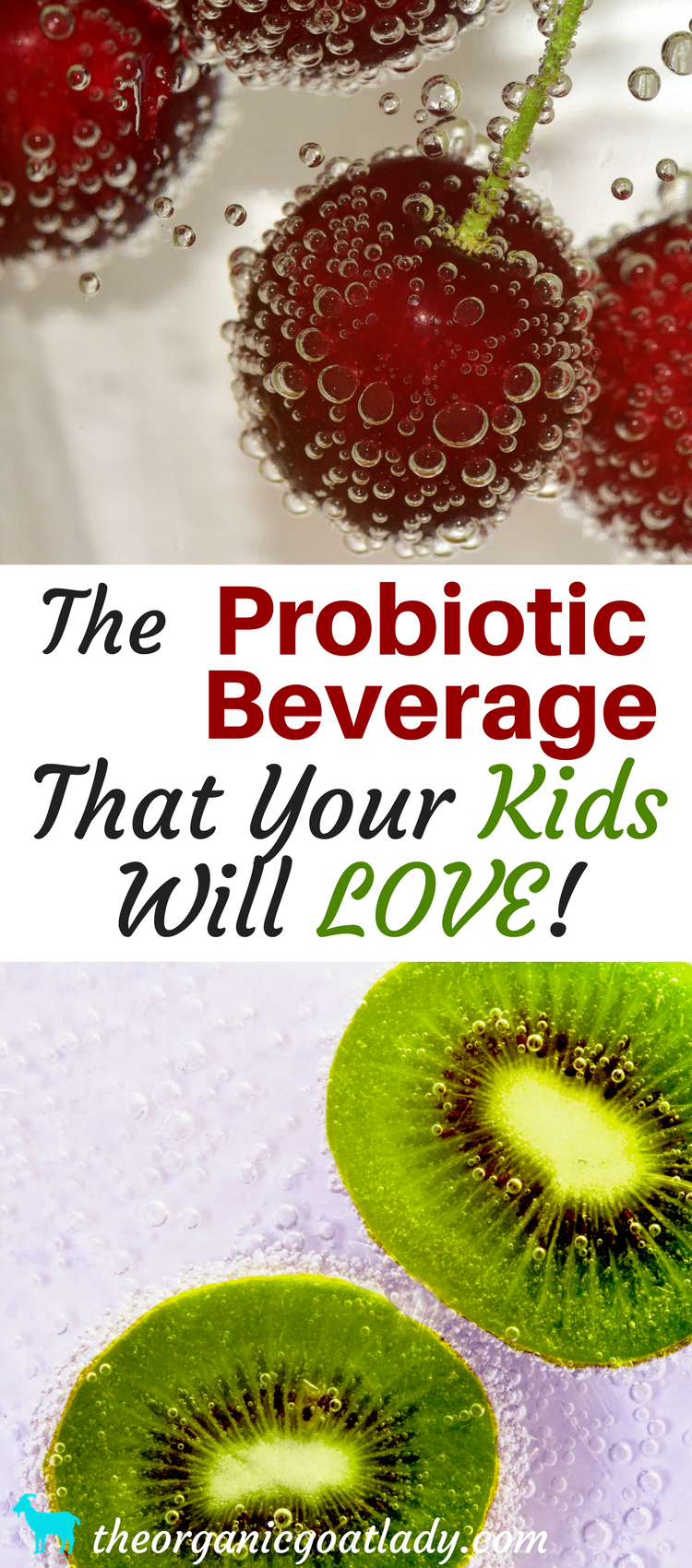 The Probiotic Beverage That Your Kids Will Love!