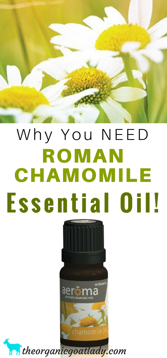 Why You NEED Roman Chamomile Essential Oil