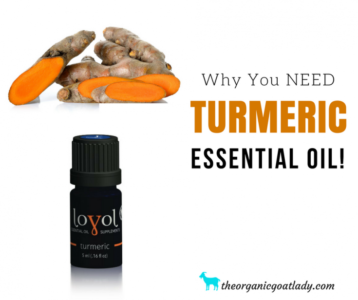 Why You Should Use Turmeric Essential Oil!