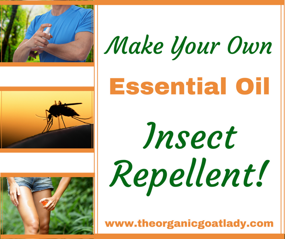 Make Your Own Essential Oil Mosquito Repellent The Organic Goat