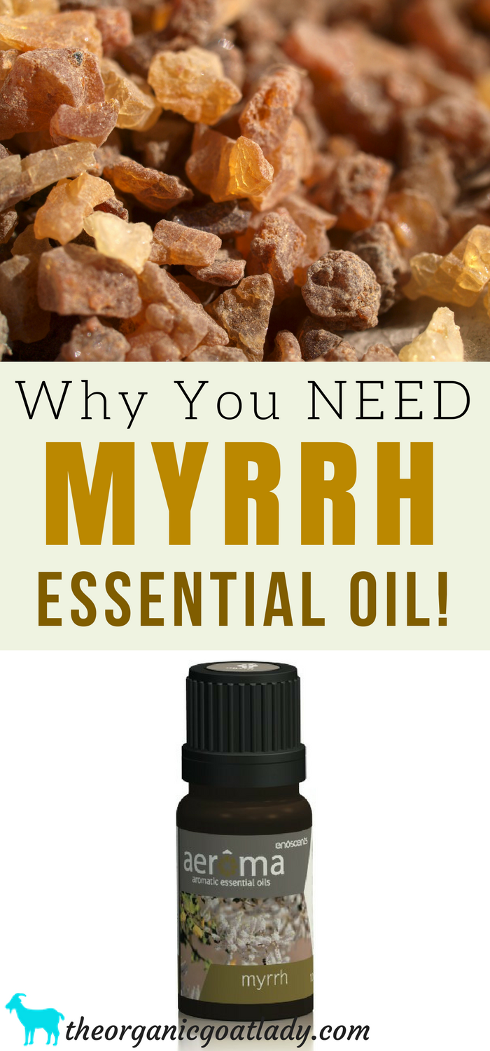 Why You NEED Myrrh Essential Oil!