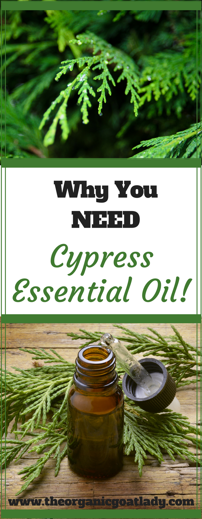 Why You NEED Cypress Essential Oil!