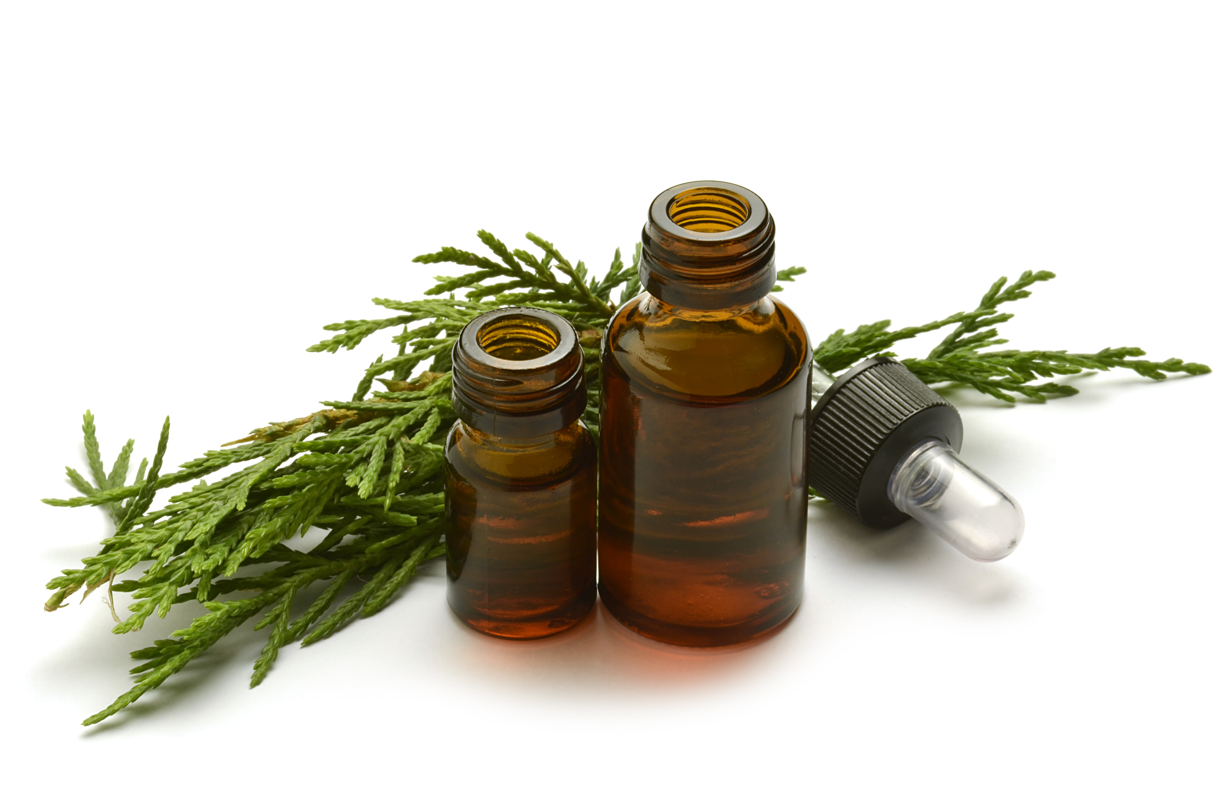 how to make cypress oil