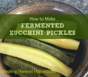 Fermented Zucchini Pickles