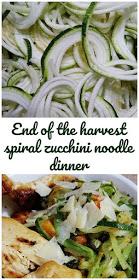 Spiral Zucchini Noodle Dinner