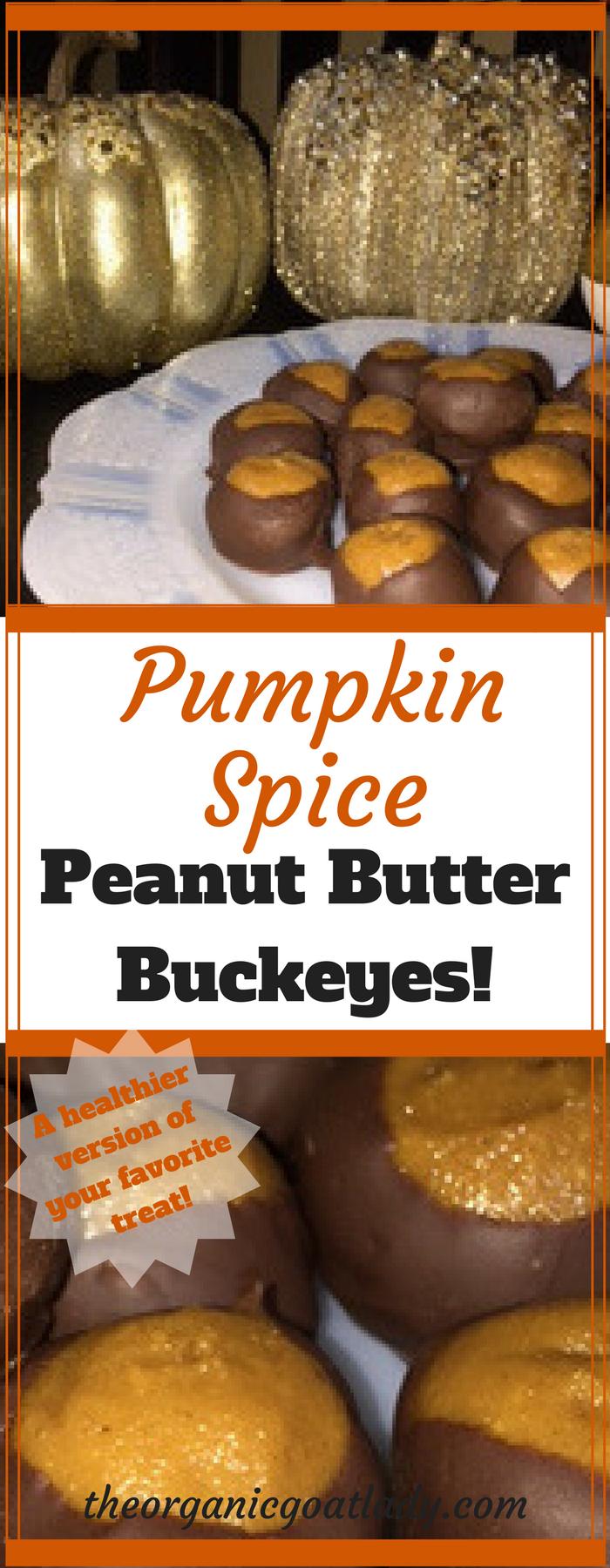 Pumpkin Spice Peanut Butter Buckeyes!