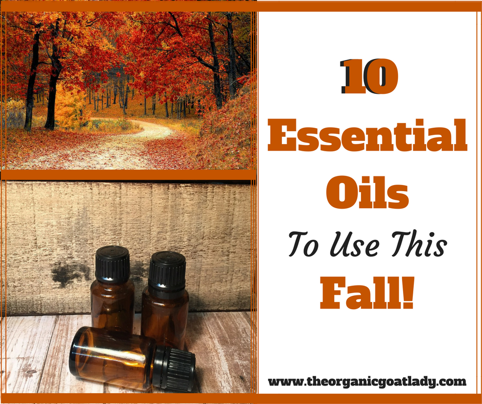 10 Fall Essential Oils That You Must Try!