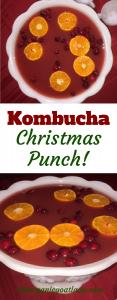 Kombucha Christmas Punch!
