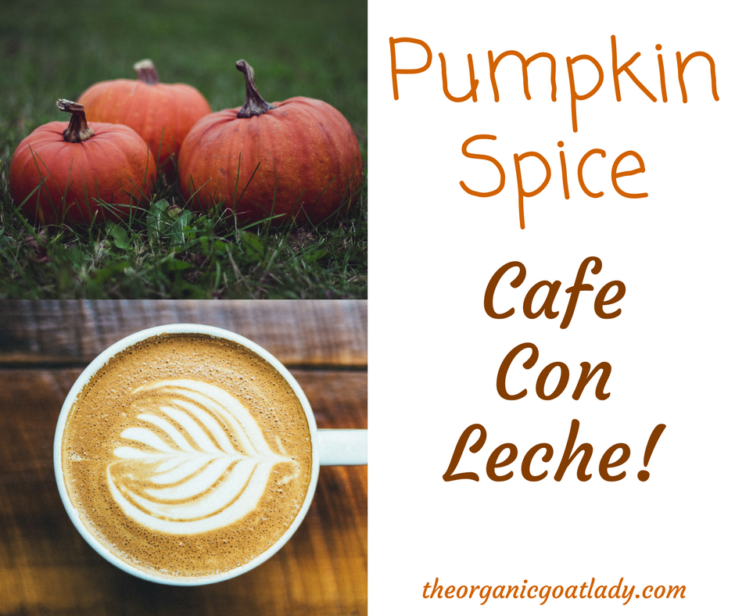 How To Make Cafe Con Leche With Pumpkin Pie Spice!