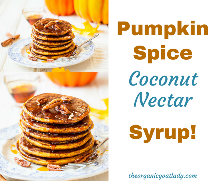 Coconut Nectar Pumpkin Spice Syrup!
