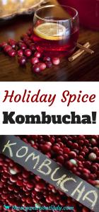 Holiday Spice Kombucha!