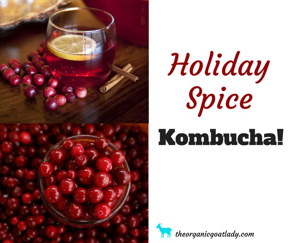 Holiday Spice Kombucha Recipe!