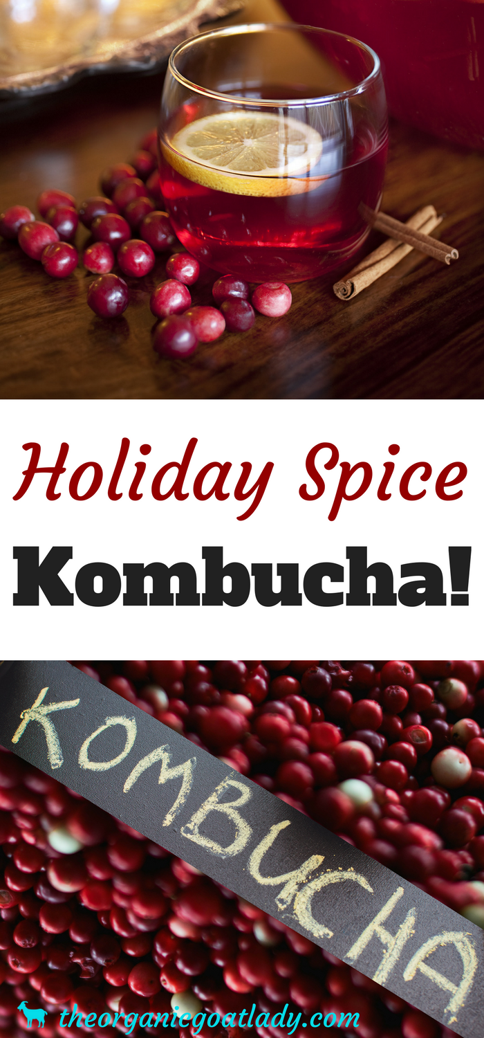 Holiday Spice Kombucha!