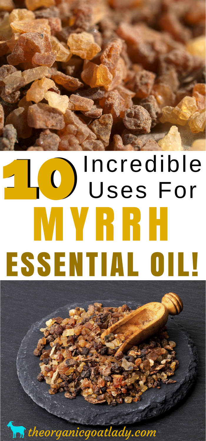 10 Incredible Uses For Myrrh Essential Oil!