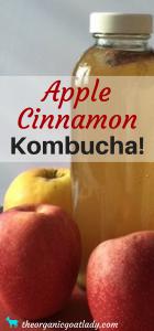 Apple Cinnamon Kombucha!