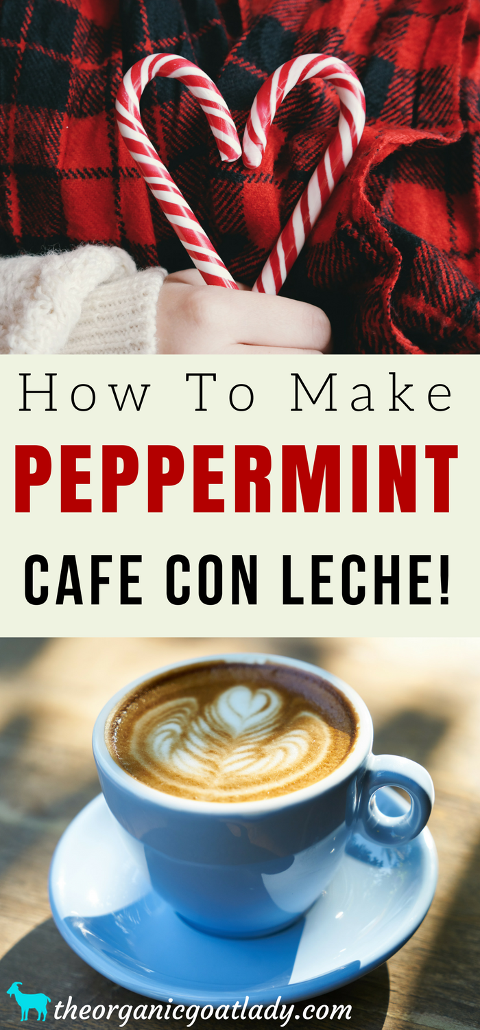 How To Make Peppermint Cafe Con Leche!