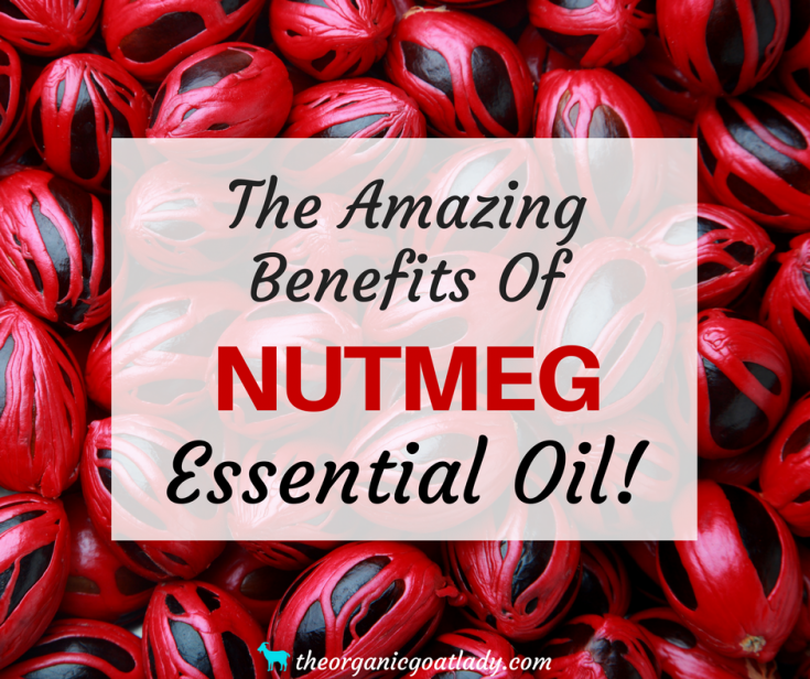 Why You Should Use Nutmeg Essential Oil!