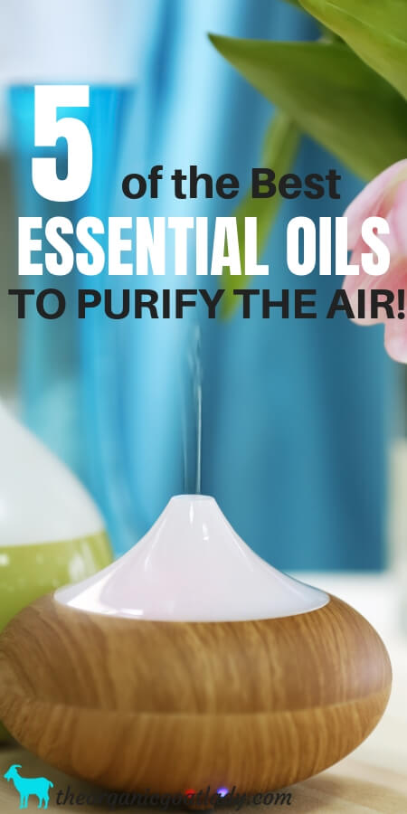 Essential Oils To Purify Air