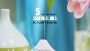 Best Essential Oils To Purify Air