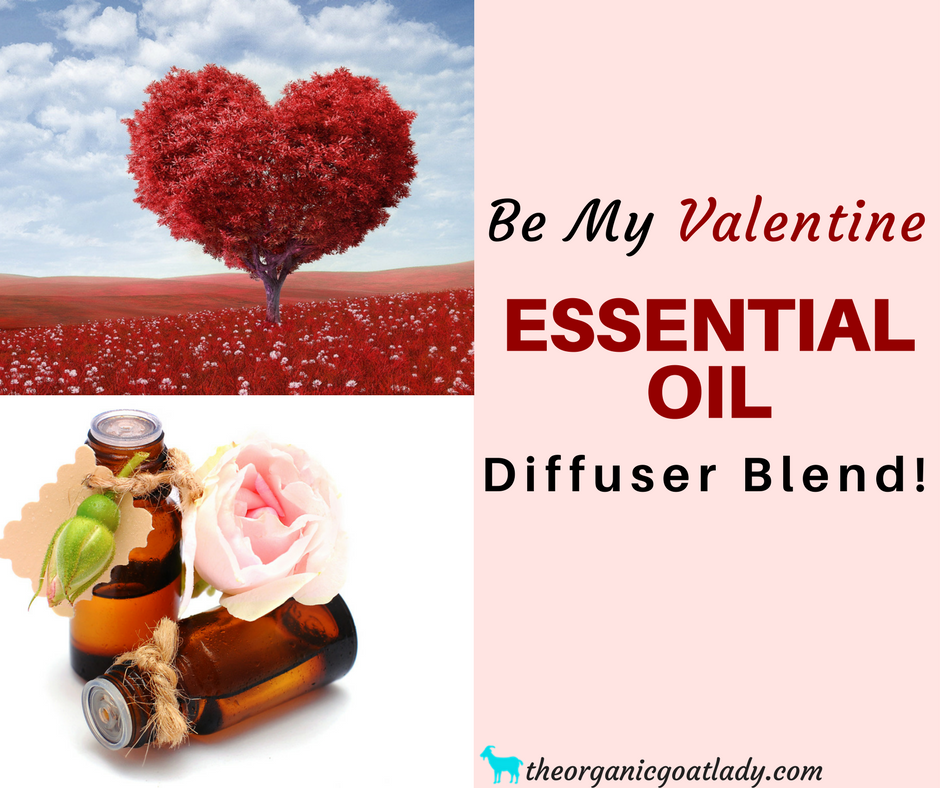 Be My Valentine Essential Oil Diffuser Blend!