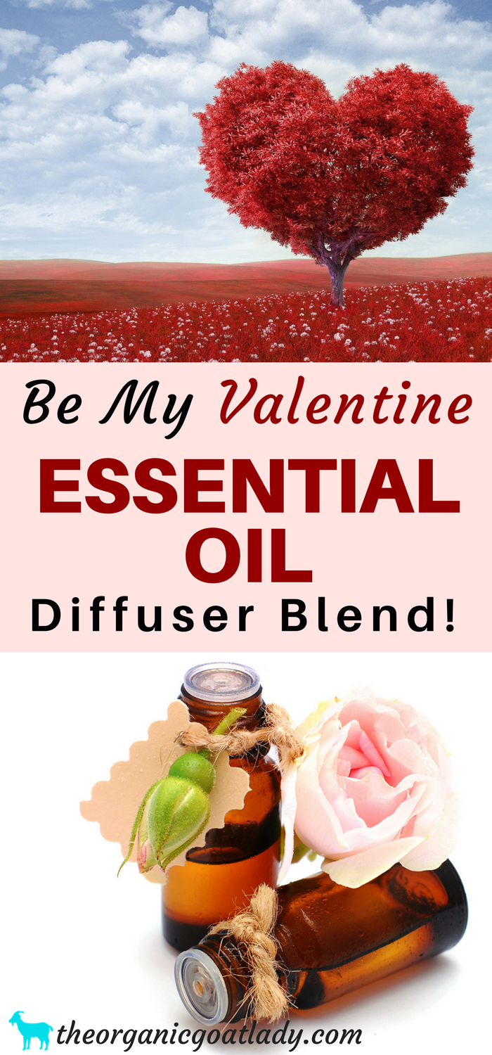 Be My Valentine Essential Oil Diffuser Blend