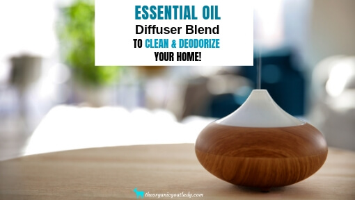 Clean Home Deodorizing Essential Oil Diffuser Blend!