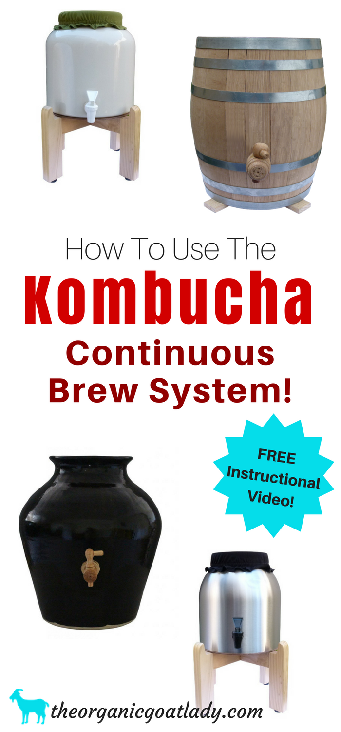 How To Use The Kombucha Continuous Brew System Free Instructional Video