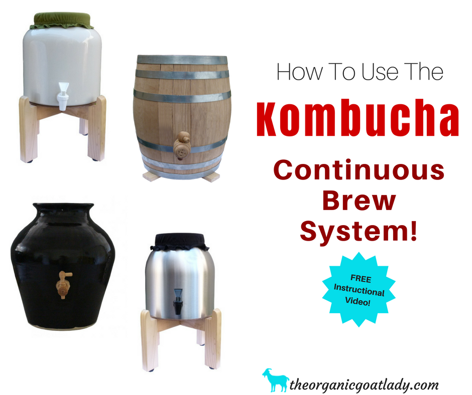 How To Make Continuous Brew Kombucha- FREE Instructional Video!