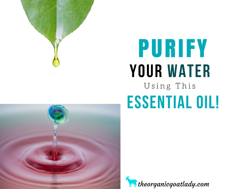 The Best Essential Oil Water Purifier!