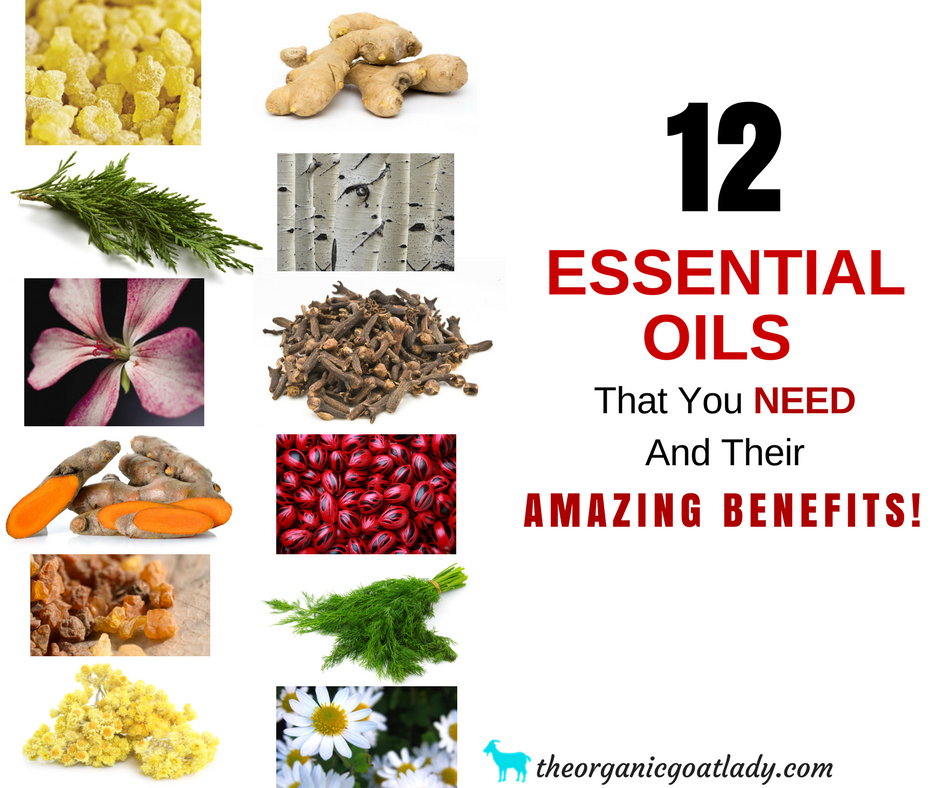 12 Essential Oils That You NEED And Their Amazing Benefits!