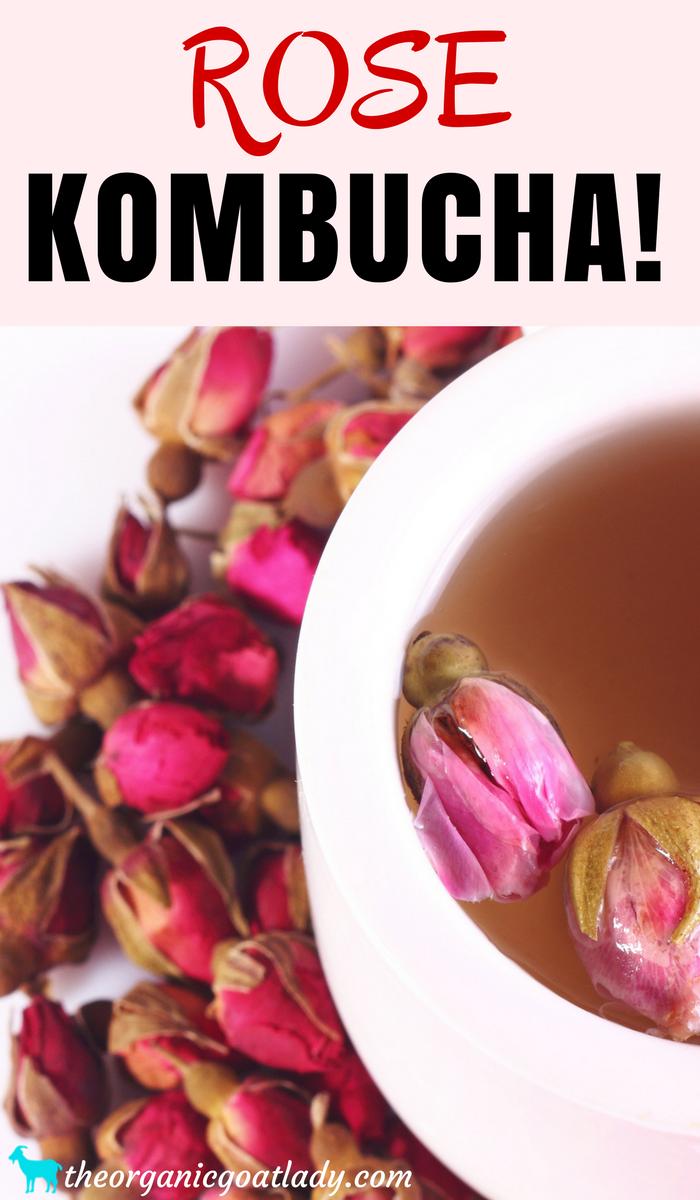 Rose Kombucha