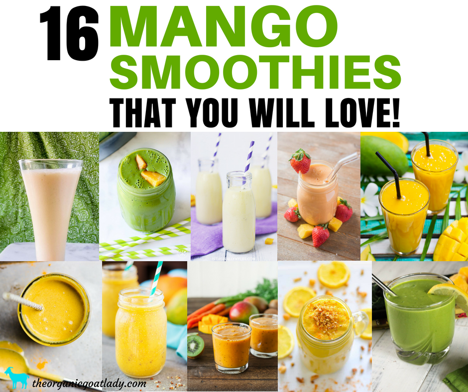 16 Mango Smoothie Recipes That You Will Love!
