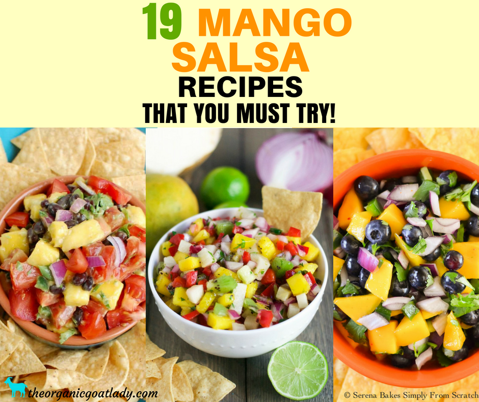 19 Mango Salsa Recipe Ideas!