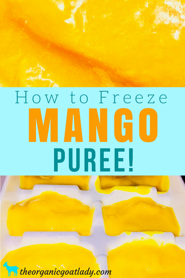 Freezing Mango