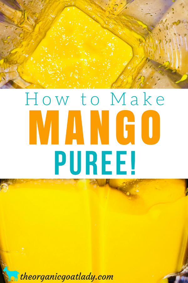 Mango Puree Recipe