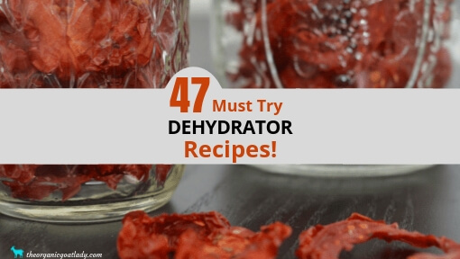 47 Food Dehydrator Recipes!