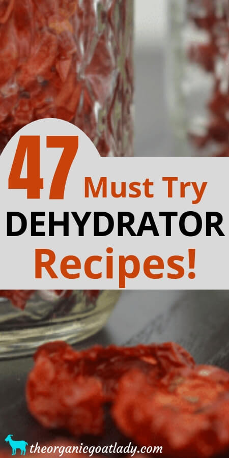 Dehydrator Recipes