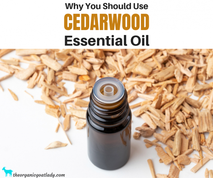Why You Should Use Cedarwood Essential Oil
