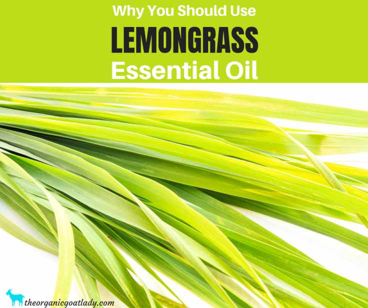 Why You Should Use Lemongrass Essential Oil