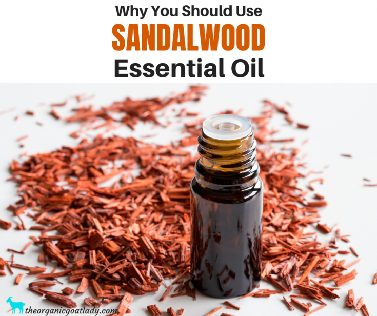 Why You Should Use Sandalwood Essential Oil
