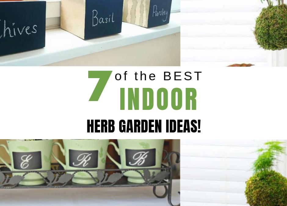 7 of the Best Indoor Herb Garden Ideas!