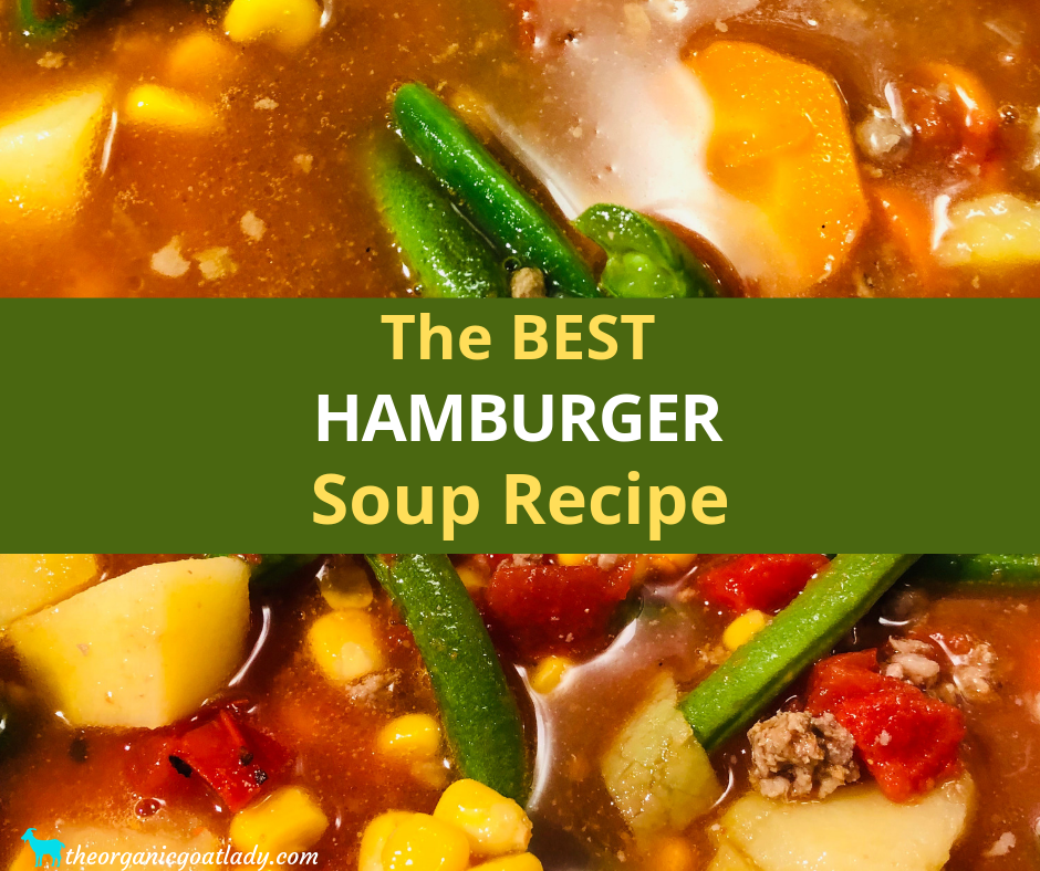 The Best Hamburger Soup Recipe The Organic Goat Lady