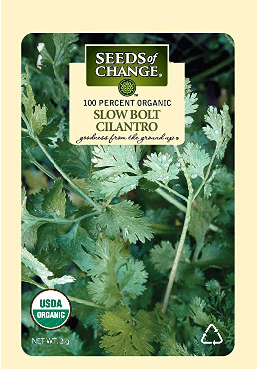 Seeds of Change Certified Organic Santo Cilantro Slow Bolt, 200 Seed Count