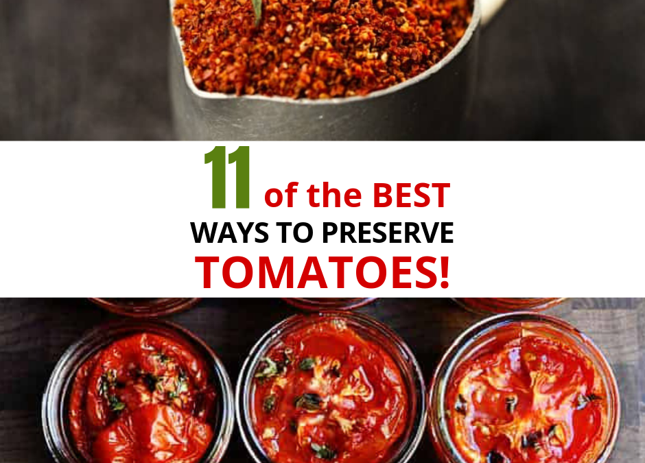11 Ways To Preserve Tomatoes