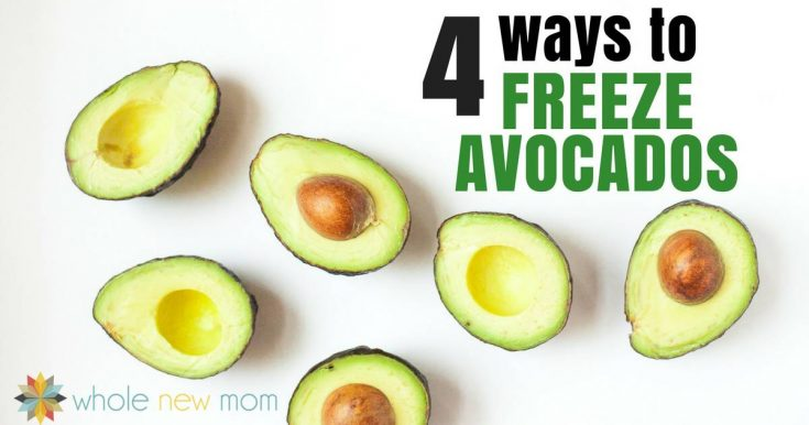 4 Ways to Freeze Avocados! {It Really Is Possible!}