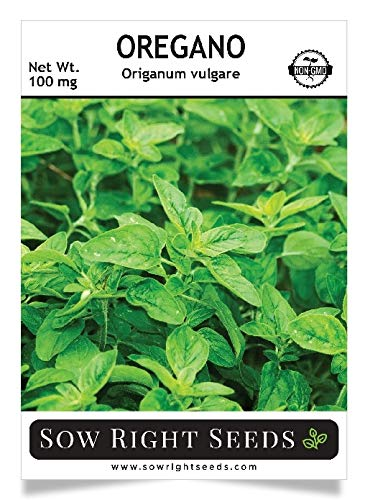 Sow Right Seeds - Oregano Seed for Planting; 500 Non-GMO Heirloom Seeds per Packet with Instructions to Plant and Grow a Kitchen Herb Garden, Indoor or Outdoor; Great Gardening Gift