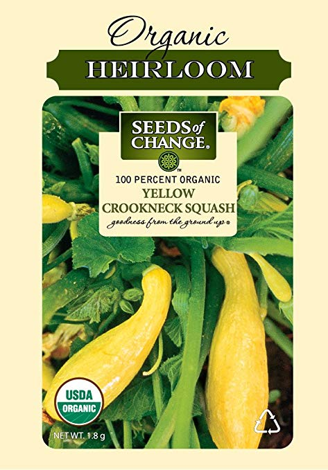 Seeds of Change S10672 Certified Organic Yellow Crookneck Summer Squash